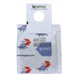 Koppert Spical-Plus (Neoseiulus californicus) sachet