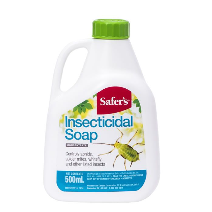 Safer's Insecticidal soap 500ml concentrate