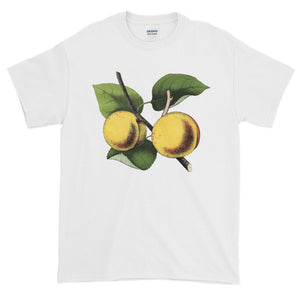 Apricot Tree Branch Adult Unisex T-shirt