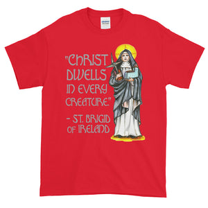 Christ Dwells in Every Creature St Brigid of Ireland Adult Unisex T-shirt