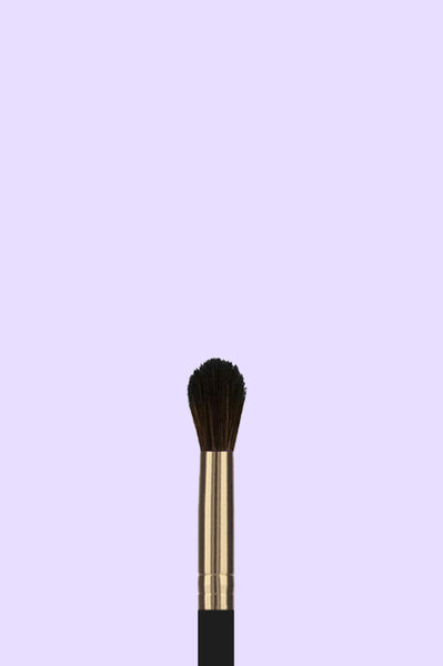 Pro Cosmetic Brush - Tapered Blending 202