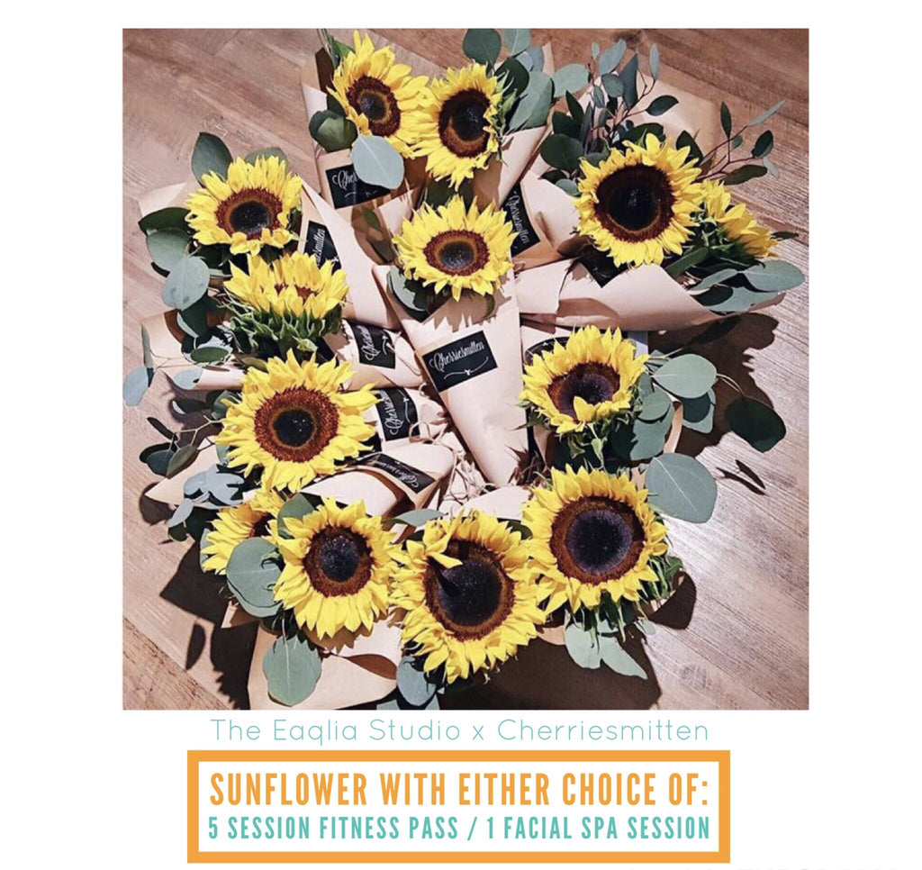 MDP - Sunflower Set