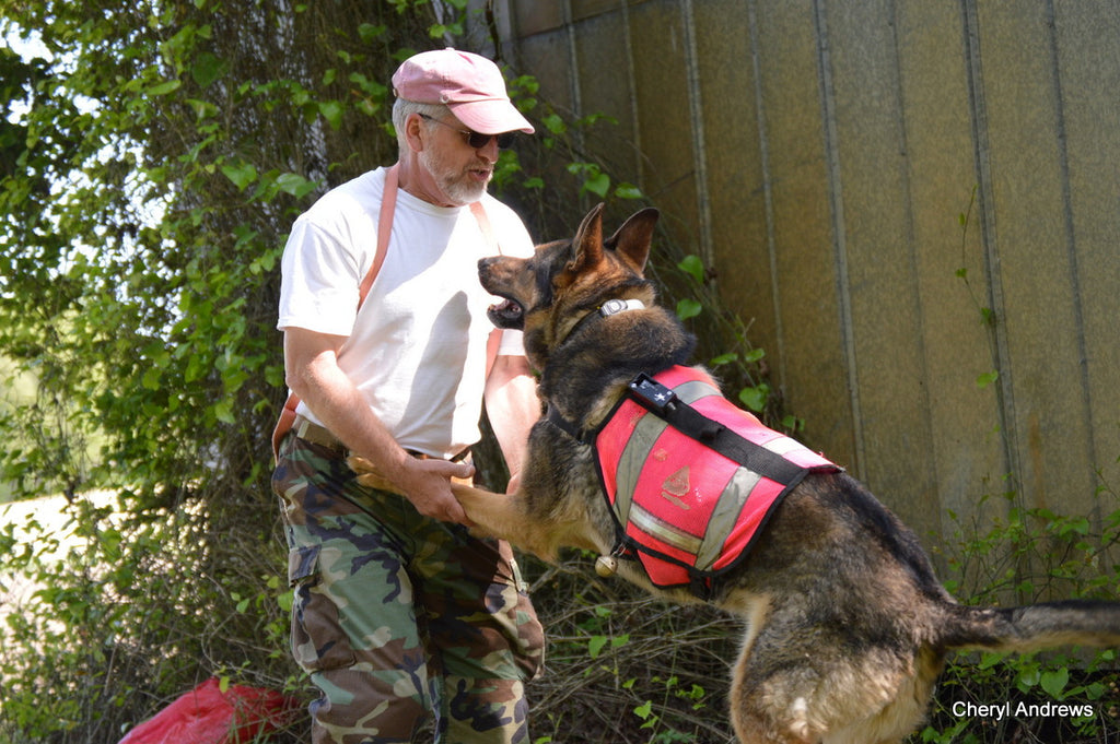 Searchdog - The Movie