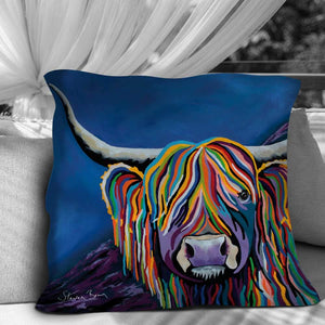 Billy McCoo - Cushions