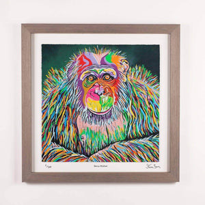 Boris McZoo - Framed Limited Edition Floating Prints