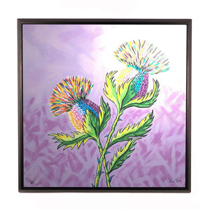 McThistles - Framed Limited Edition Aluminium Wall Art