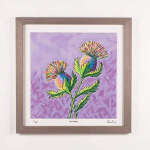 McThistles - Framed Limited Edition Floating Prints