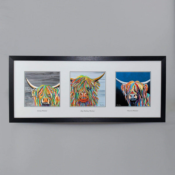 Mr McCoos Collection - Triptych