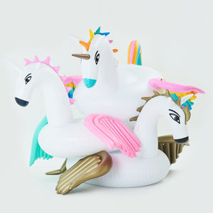 Pegasus Floats Bundle - letsfloatsg