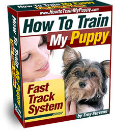 Puppy Training Fast Track System - First Time