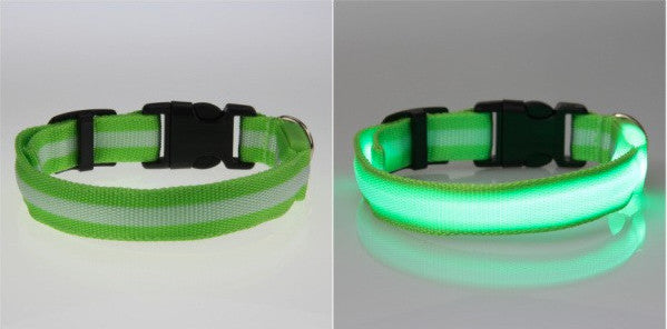 LED Nylon Night Safety Dog Collar - Battery Operated
