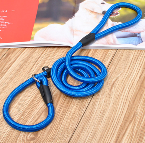 PuppyTrainingFastTrack Training Slip Leash®️ (AND Also The Puppy Training Fast Track System)