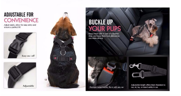 PupBodyGuard™ Seatbelt and Harness- FREE Shipping!