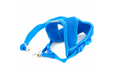 Soft Air Mesh Harness AND Matching Leash - Small Dogs - FREE