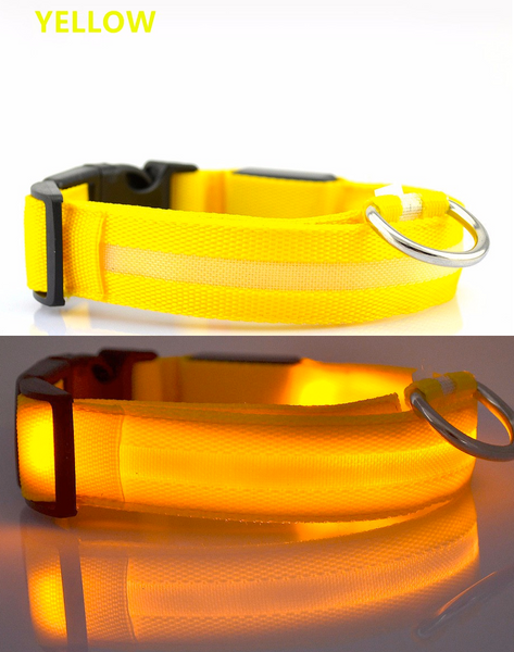 Compawions Doggy Beacon Collar™ - Limited Time - FREE Shipping