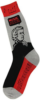 Men's Education-Themed Socks, Mozart (Shoe Sizes 7-12)
