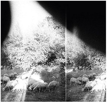 Godspeed You! Black Emperor - Asunder Sweet and Other Distress - new LP