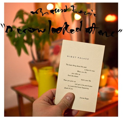 Mount Eerie - A Crow Looked At Me - new LP