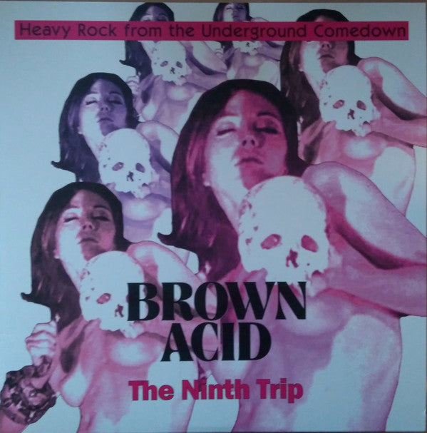 Various ‎– Brown Acid: The Ninth Trip (Heavy Rock From The Underground Comedown) - new vinyl