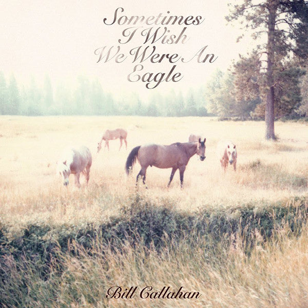 Bill Callahan ‎– Sometimes I Wish We Were An Eagle - new vinyl