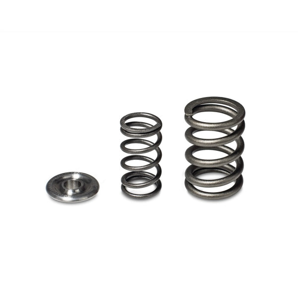 Skunk2 Alpha Series Honda/Acura H Series Valve Spring and Titanium Retainer Kit