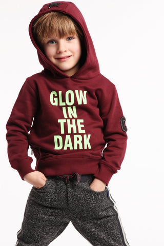 Hoody Winter Red