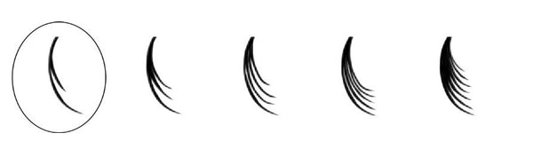 Lash Density | Divine Lash Co.