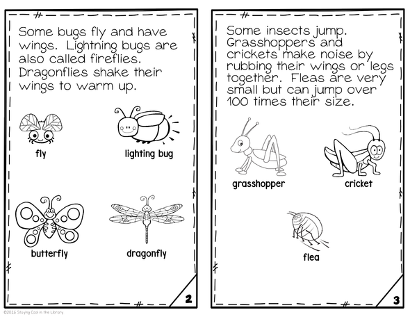 Insects Mini Books (Emergent Reader)