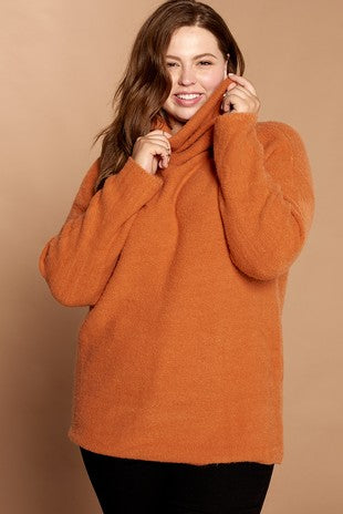 Plus Size Turtle Neck Pullover Sweater