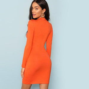 Naxia Bodycon Dress