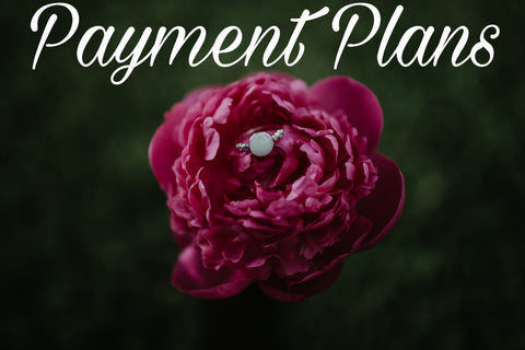 Payment Plan, Tanner