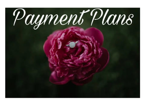 Payment Plan, Nicole