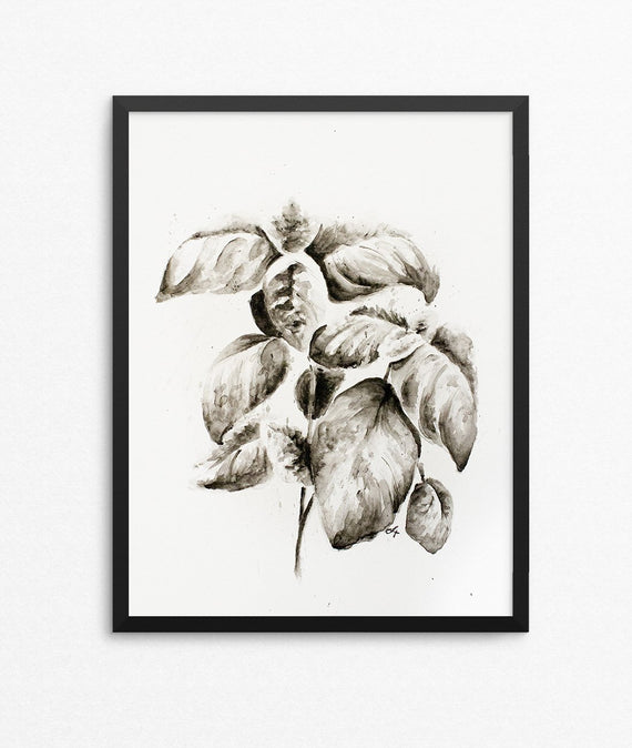 Basil Watercolor Print - Herb Silhouette Series-Farmhouse Living - Farmhouse Decor