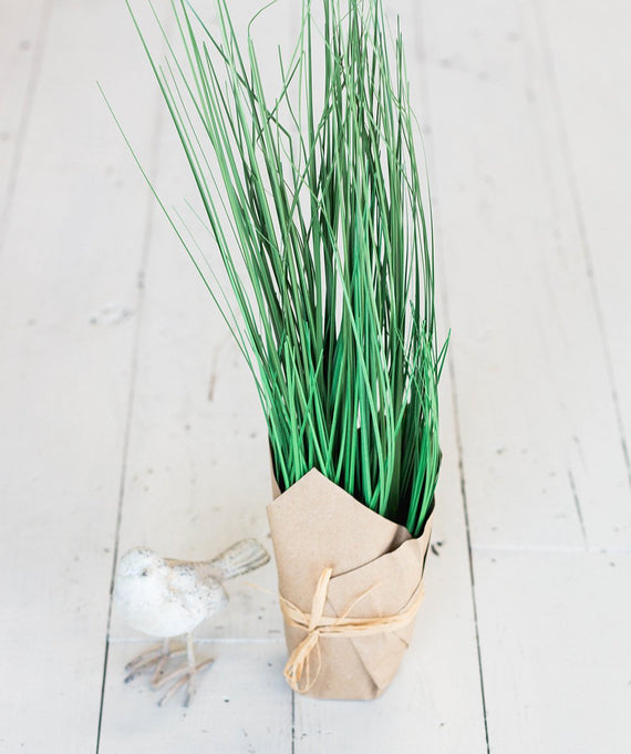 Tall Green Grass in Paper Pot-Farmhouse Living - Farmhouse Decor