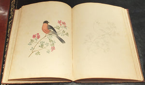 BROOKSHAW, George (1751-1823).  Six Birds, Accurately Drawn and Coloured After Nature, with Full Instructions for the Young Artist; Intended as a Companion to the Treatise on Flower Painting