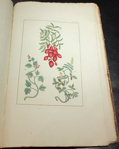 BUC'HOZ, Pierre Joseph (1731-1807).  Herbier ou collection des plantes medicinales de la Chine. Paris: for the author, 1781.
