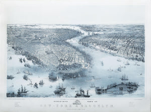 Drawn, printed, and published by JOHN BACHMANN (1814-1896): Bird's Eye View of New York and Brooklyn.