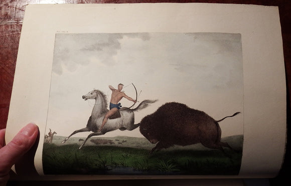 [DOUGHTY, John and Thomas(1793-1856)]. The Cabinet of Natural History and American Rural Sports. Philadelphia: J. & T. Doughty, 1830-1834.