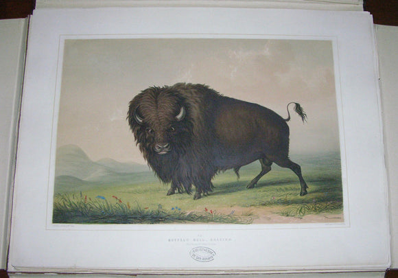 CATLIN, George (1796-1872). North American Indian Portfolio, Hunting Scenes and amusements of the Rocky Mountains and Prairies of America. London: George Catlin, Egyptian Hall, 1844.