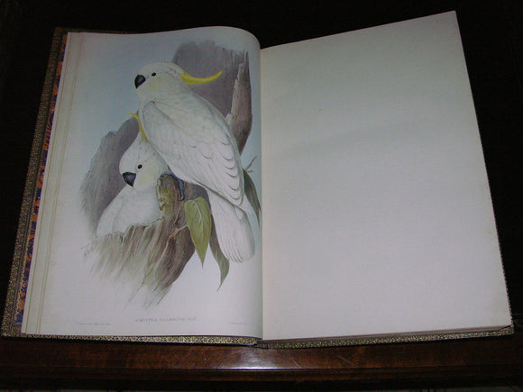GOULD, John (1804-1881). The Birds of Australia - The Birds of Australia. Supplement