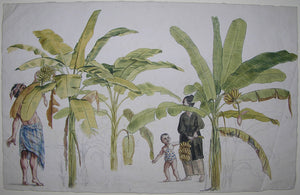 brandes-jan-1743-1808-original-watercolour-drawing-of-a-banana-plantation-and-pickers-in-java-sweden-ca-1779-1785