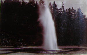 "HAYNES, Frank Jay (1853-1921) - YELLOWSTONE NATIONAL PARK. Fine Photograph of ""Economic Geyser"". [1887]."
