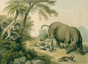 samuel-howitt-british-1765-1822-hunted-rhinoceros-watercolor-on-paper