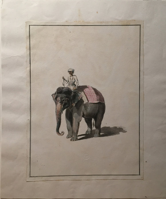 COMPANY SCHOOL (NINETEENTH-CENTURY) [Mahout with Elephant] From A Collection of Drawings of Indian Natural History