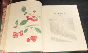 BROOKSHAW, George (1751–1823). Pomona Britannica, or a Collection of the Most Esteemed Fruits at Present Cultivated in Great Britain. London: T. Bensley for Longman, Hurst, Rees, Orme & Brown and John Lepard, [1816]–1817.