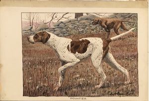 LOUIS AGASSIZ FUERTES (AMERICAN, 1874-1927) The Pointer