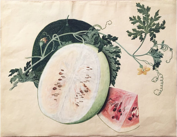 MALAYSIAN OR INDIAN SCHOOL (19TH-CENTURY), Watermelon