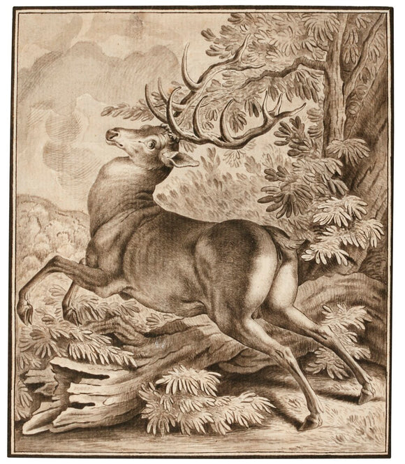 johann-elias-ridinger-german-1698-1767-a-startled-deer-pen-and-black-ink-and-grey-wash-over-traces-of-black-chalk-within-pen-and-black-ink-framing-lines-on-paper