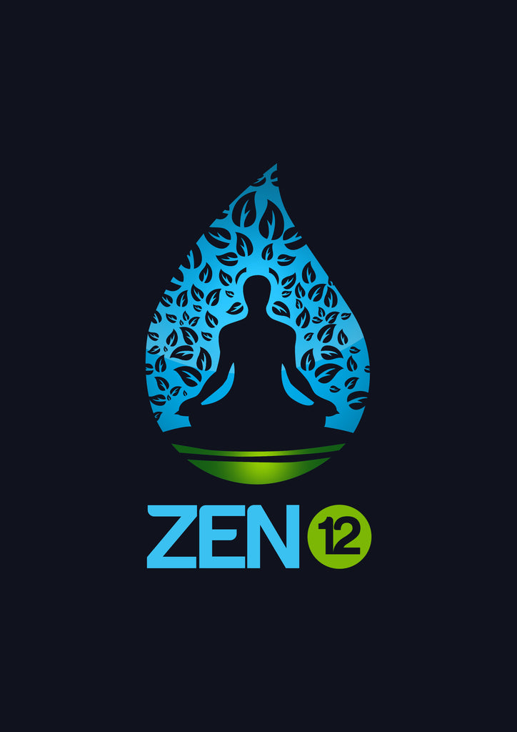Zen 12 - Gift from our Partners