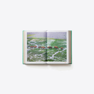 China: The Cookbook - Phaidon-Home-Phaidon-Rothirsch Online Shop